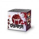 Batería Oyama